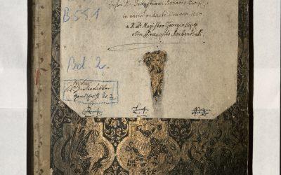 Das Buch, das 900 Jahre belegt